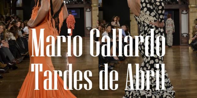 Mario Gallardo We Love Flamenco 2015 30